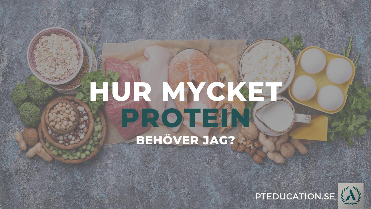 proteinmängd per dag